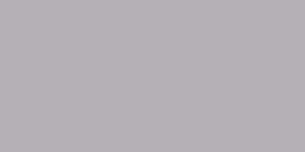 S 1005-R50B
